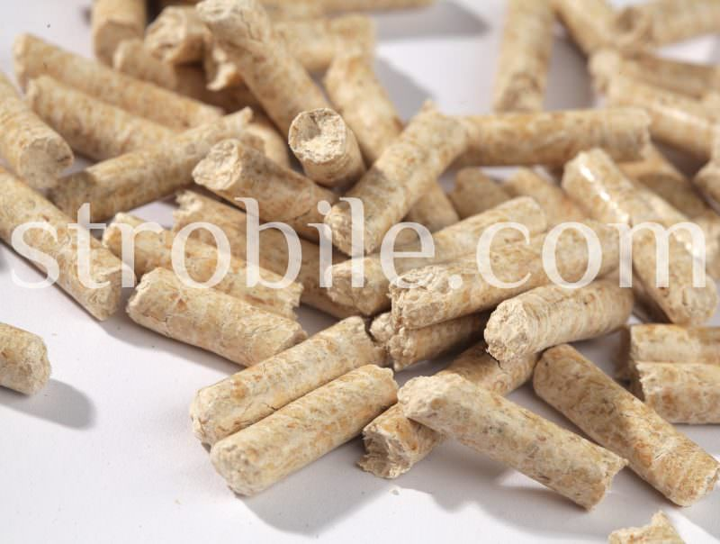 Even though color is not an official criteria of ENplus, we use fresh and dry raw materials so the product has natural look. In the production of Virgin Wood Pellets Silver Fir we refused to use any kinds of additives, including any colorants. The color of the pellet is not evenly distributed along each pellet, which is a proof of natural composition.
